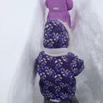 Снежные ходы...